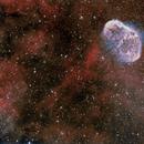 Crescent Nebula + Soap Bubble Nebula,                                Paulo  Lobao