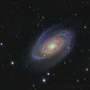 M81,                                Bart Delsaert