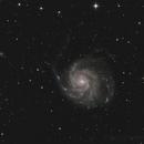 Messier M101 - Feuerrad-Galaxie,                                Horst Twele