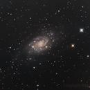 NGC2403,                                astrognocq