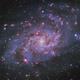 Messier 33 - Triangulum Galaxy,                                ruediger