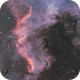 North America Nebula - NGC 7000,                                DanielZoliro