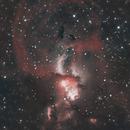 NGC3576 The Statue of Liberty Nebula,                                David Wright