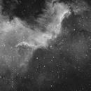 NGC 7000 in Ha,                                Alan Hancox