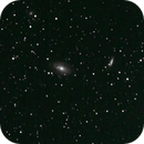 M81 and M82 cropped from wide field,                                Ian Dixon