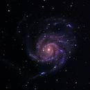 M101,                                Scott Alber