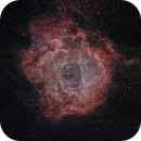 ngc2244 nebulosa Rosetta,                                Massimo Miniello