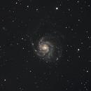 M 101 -  Pinwheel Galaxy,                                Gérard Nonnez