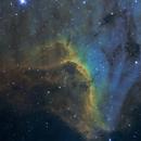 IC 5070 The Pelican Nebula,                                cclark