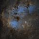 The Tadpoles nebula - IC410,                                Rob Parsons