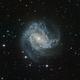 SOUTHERN PINWHEEL GALAXY (M 83, NGC 5236),                                Roberto Luiz Spen...