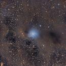 Dust clouds around IC 2631 in Chamaeleon,                                Geoff