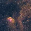 Sh2-101 - Tulip Nebula and Surroundings,                                Marc Schuh