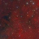 LBN 240 near Gamma Cyg,                                Eric Coles (coles44)