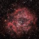 NCG 2237 Rosette nebula,                                Federico Pellegrino