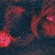 Cone and Rosette Nebulae,                                  Scott M. Stirling