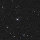 NGC6951,                                Florian APPERT