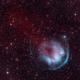 Heckathorn-Fesen-Gull 1 (HFG1),                                Luca Marinelli