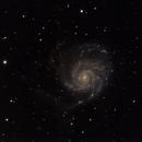 M101 Pinwheel,                                nlskies