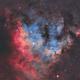 NGC7822 in Cepheus with RGB stars,                                Carastro