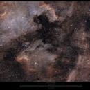"""Cygnus CI (WIP Widefield @0.5""""/pix),                                Morten Balling"""