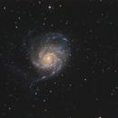 M101 Spiral Galaxy in Ursa Major,                                Elmiko