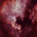 NGC-7000 The North American Nebula,                                Wes Chilton