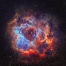 NGC 2244 - The Rosette Nebula in SHO,                                CrestwoodSky