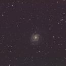 Messier 101,                                Marc Furst