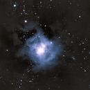 Iris nebula,                                Elliott Melan