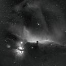 Barnard 33 (Horsehead Nebula),                                Patrick Scully