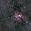 Carina Nebula,                                Michael Wolter
