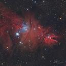 NGC2264,                                Valerio Avitabile