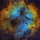 IC1396 nebula including the Elephant's Trunk (c-sho),                                Ram Samudrala