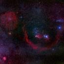 Orion Arm,                                Roi Levi