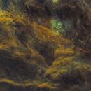 Clouds of Cygnus,                                Sendhil Chinnasamy
