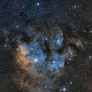 Sh 2-171, Berkeley 59, NGC 7822, & LDN 1271 in Cep OB4 - SHO Palette,                                Ara