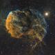 The Jellyfish Nebula (IC443) SHO,                                Alexander Voigt