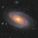 M81 - Bode's Galaxy - 2020,                                Mikko Viljamaa