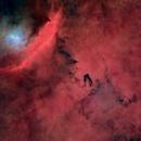 IC 4685 - NGC 6559,                                Renan
