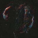 Cygnus Loop,                                Monkeybird747