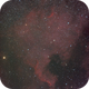 NGC 7000 : North-America Nebula,                                Jan Borms