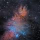 NGC 2264 - Christmas Tree and Cone Nebula - SHO,                                David Andra