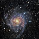 IC 342, Caldwell 5, The Hidden Galaxy,                                dkuchta5