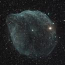 Sharpless 308 in Canis Major,                                Scott Tucker