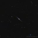 NGC4565,                                Dario Iraci