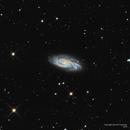 The Close Encounter Galaxy—NGC 908,                                Russ Carpenter