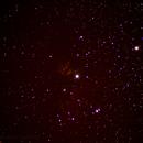 Flame + Horse Head nebula,                                Fabrizio Guerrini