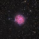 IC 5146 Cocoon Nebula,                                Krishna Vinod