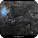 Baby Eagle to Pleiades,                                rflinn68